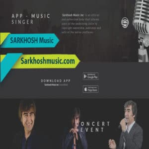 Website Design For Music Studio & Singer
